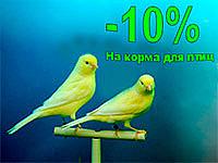 Скидка -10% на корма для Птиц