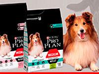 Скидка -20% от 3шт на сухие корма Pro Plan для средних собак
